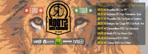 flyer rootz underground tour
